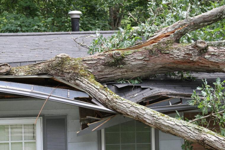 roof storm damage insurance claim
