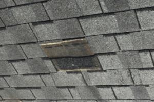 damage shingle